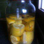 limones encurtidos preparacion 3