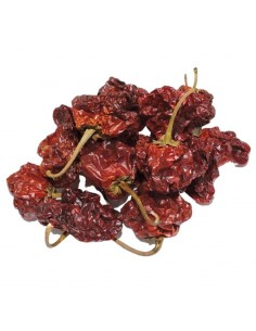 Chile Scotch Bonnet