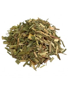 Lemon grass - citronela - hierba limon