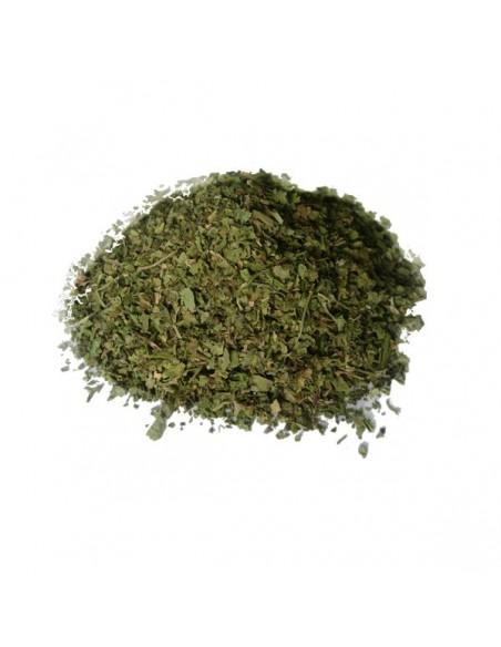Cilantro, en hojas