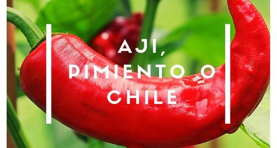 Ají, pimiento o chile