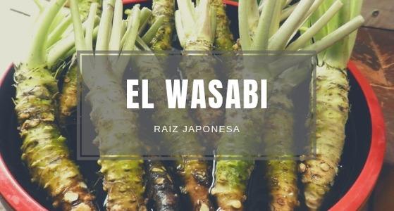 El Wasabi